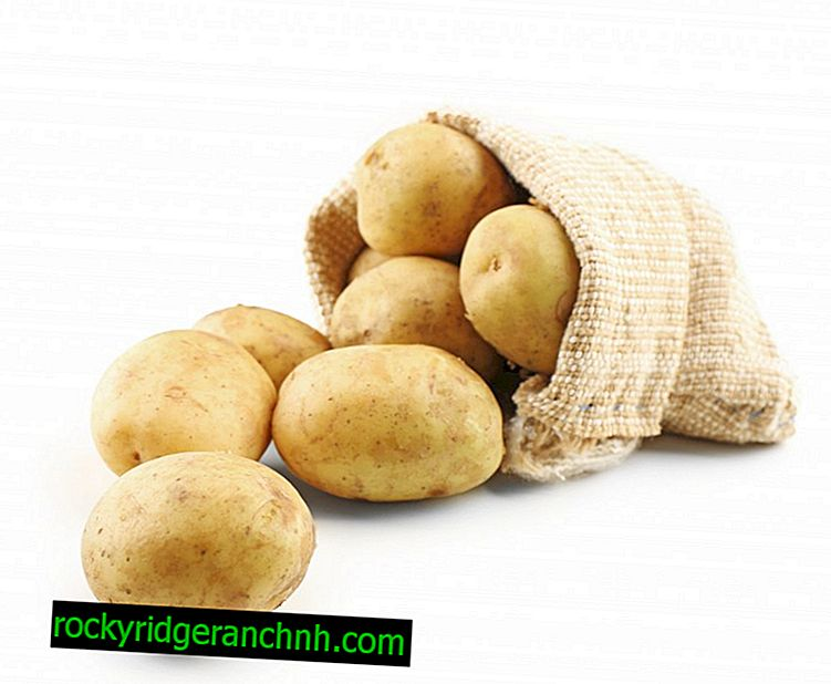 Vitamin content in potatoes