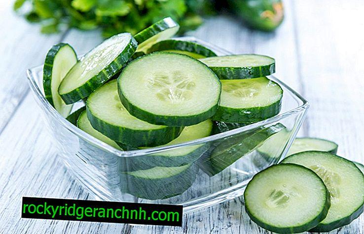 Hvilke vitaminer er rike på agurker