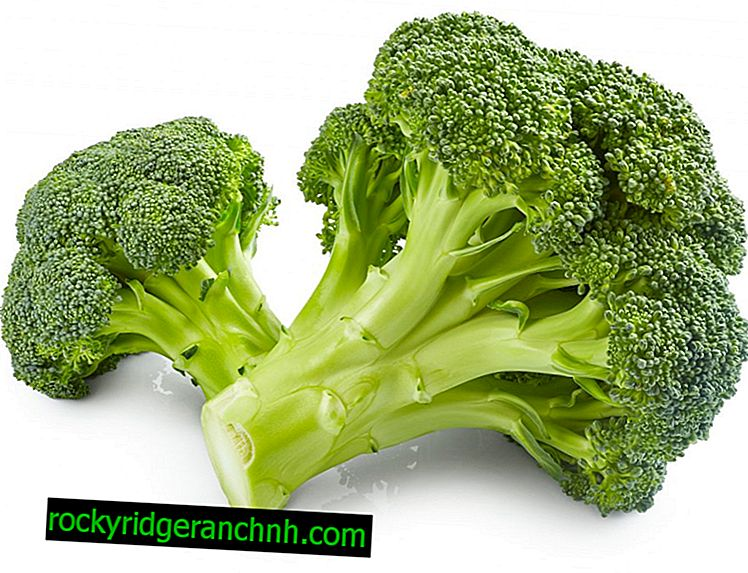 Useful properties of broccoli