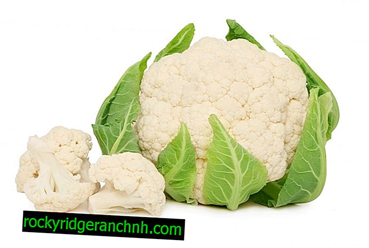 Proper freezing of cauliflower