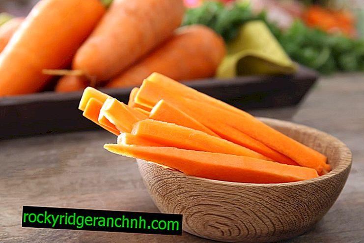 Хранене на моркови по време на бременност