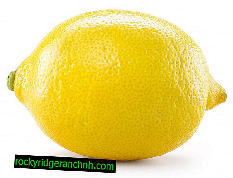 Sitron er en frukt, grønnsak eller bær