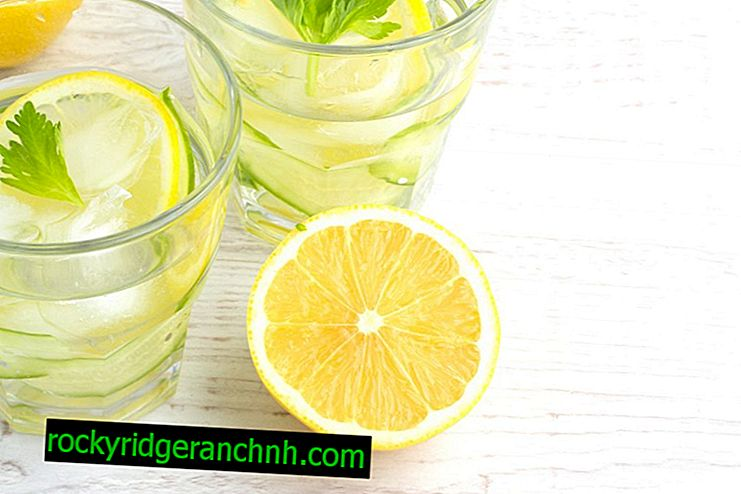 Calorie water with lemon
