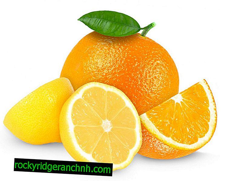 Composição vitamínica de laranjas e limões