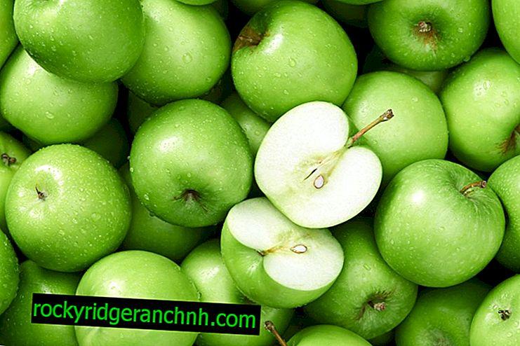 IJzer in appels