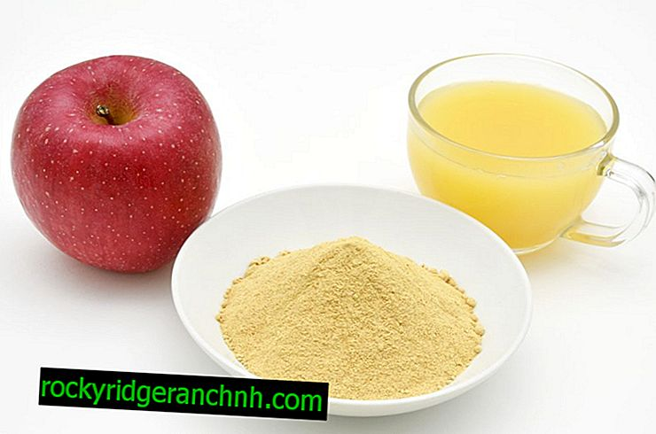 Prednosti jabolčnega pektina