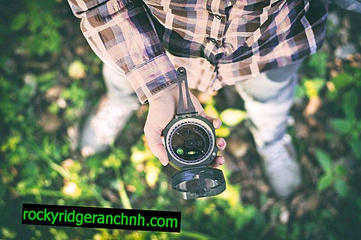 Navegador GPS para recolectores de hongos