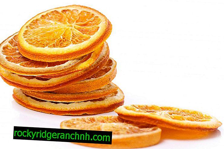 Funksjoner av tørket appelsin til dekorasjon og mat